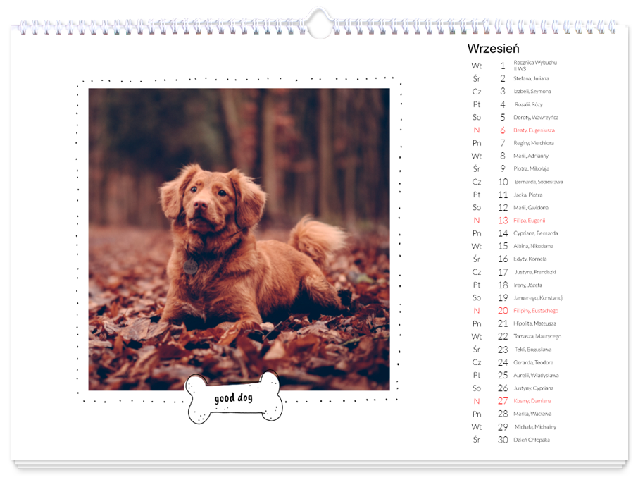 Kalendarz z psem